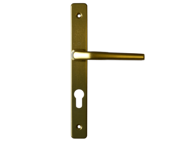 Hoppe lever handle Gold